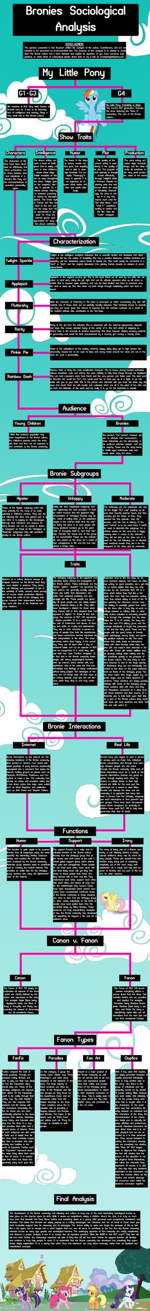 Bronie Sociological Analysis Flowchart by BroniePologist