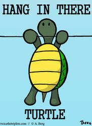 Hang in there Turtle