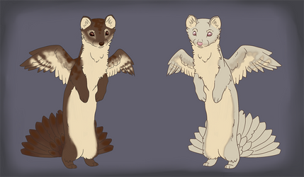 Adopts - Soaring Stoats (open)