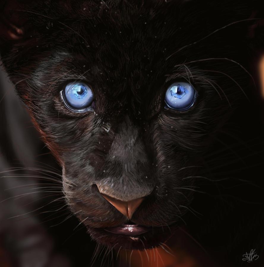 Black Panther. by CarlosMatallanaDiaz