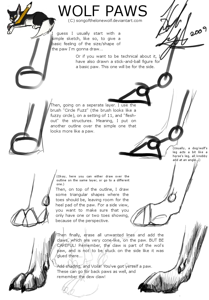 Songofthelonewolf A 'how To' On Wolf Paws By Songofthelonewolf A 'how To'  How To Draw A Dragon