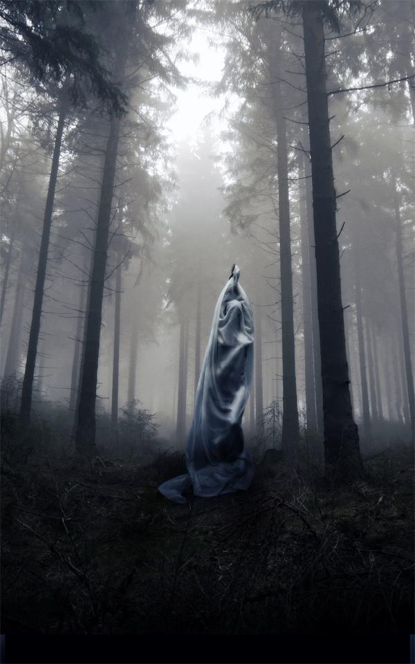 Veil by StefanoBonazzi