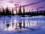 winter by ericjones