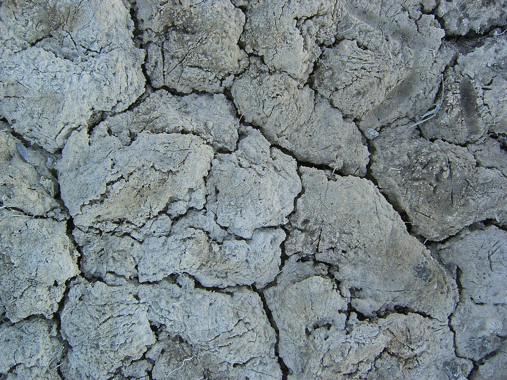 White cracked mud texture by Arctic-Stock