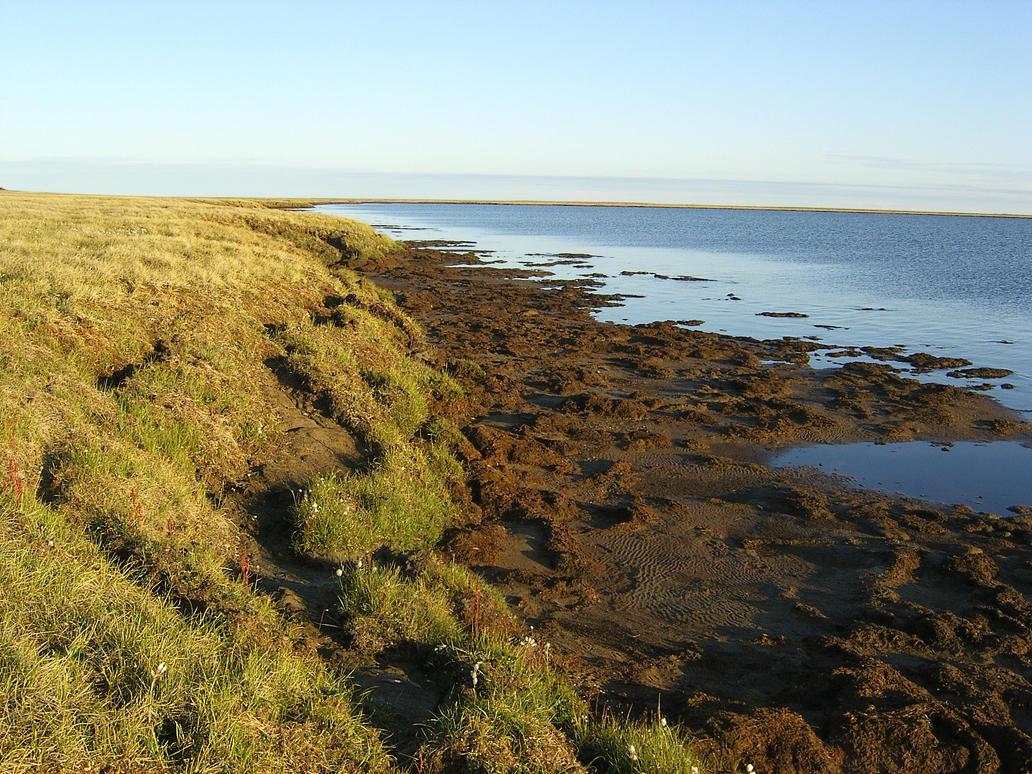 Muddy lake edge 1 by Arctic-Stock
