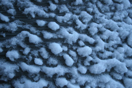 frost on wood texture