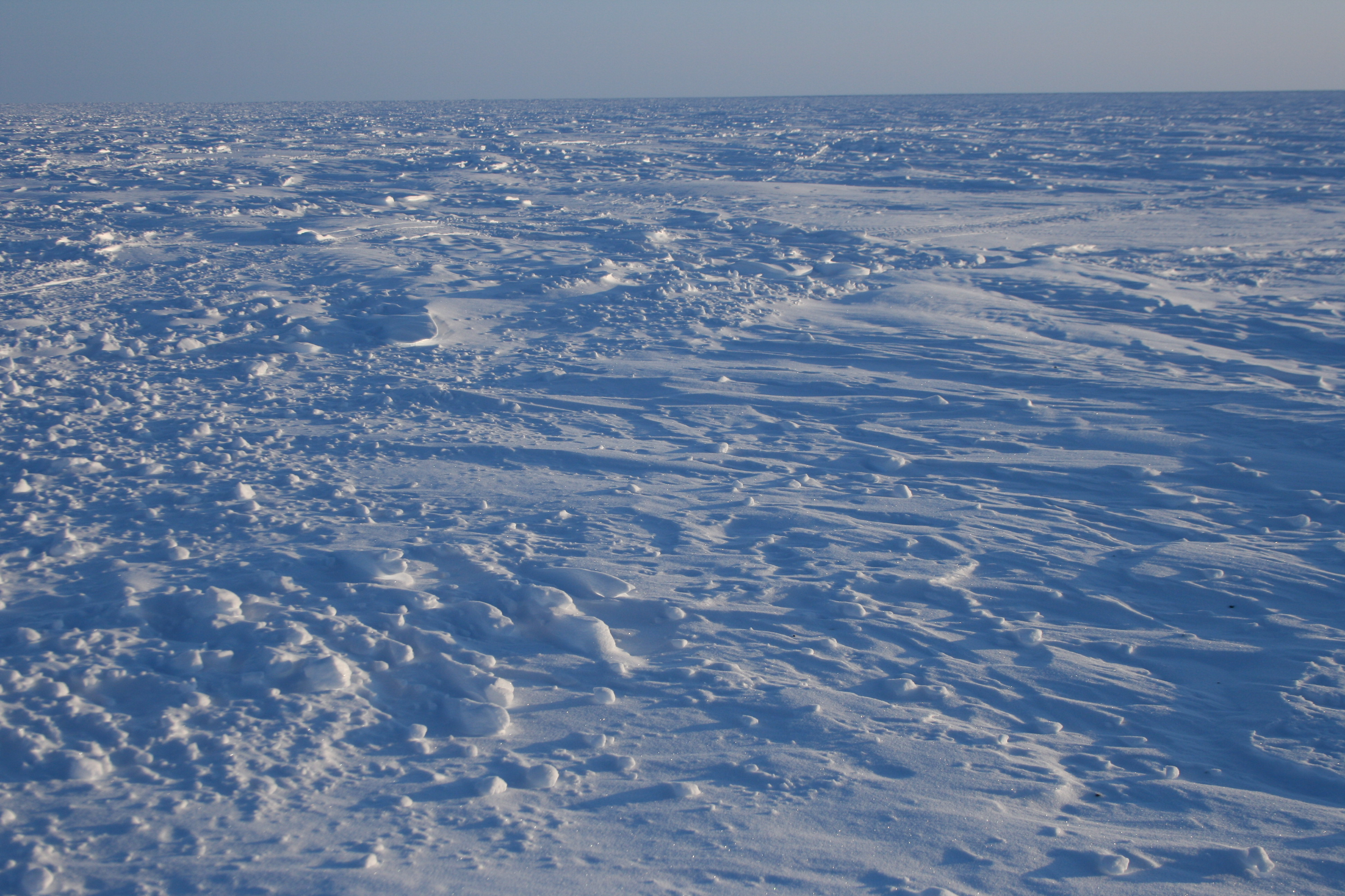 Snow Snow Snow 4