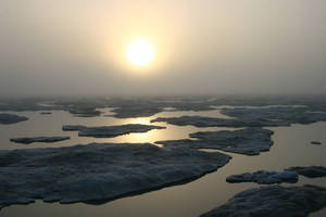 A foggy day on the ice 1 by Arctic-Stock