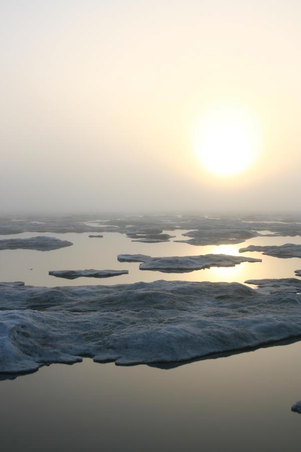 A foggy day on the ice 2