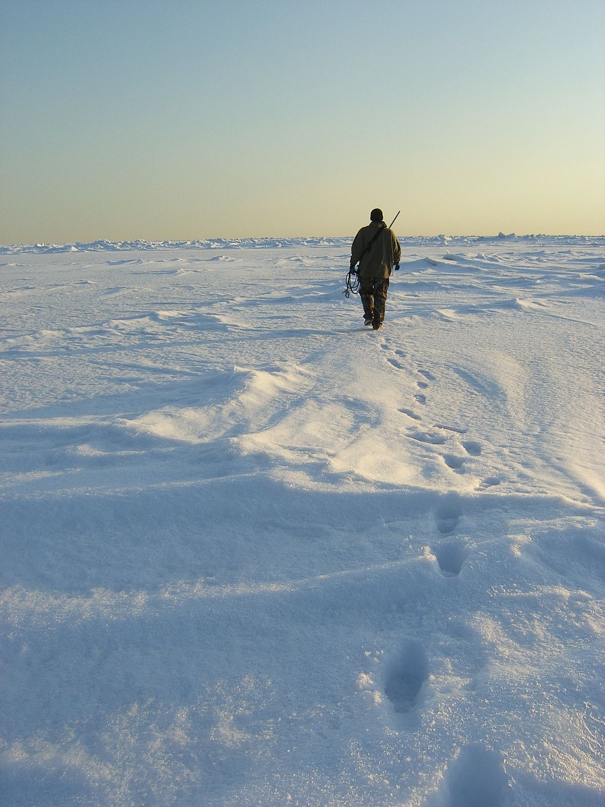 Walking on ice 1