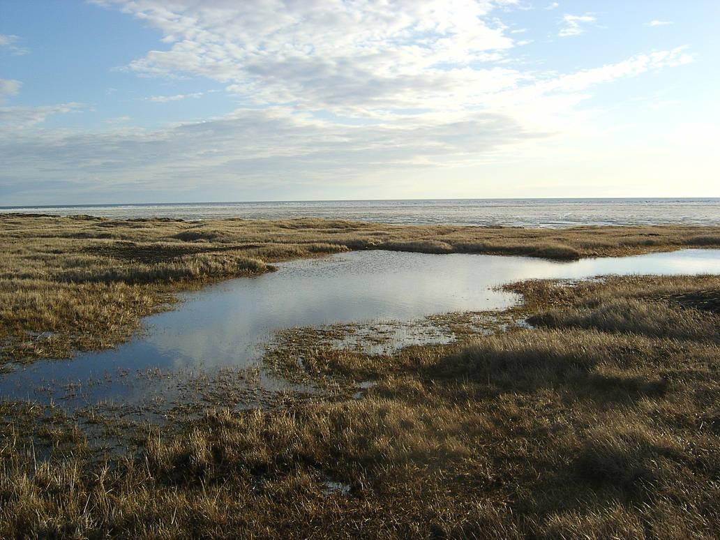 Sea pond sky 1
