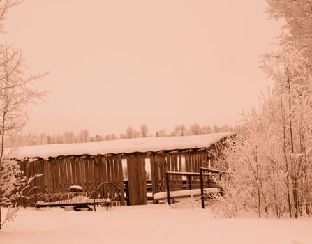 rake and snow
