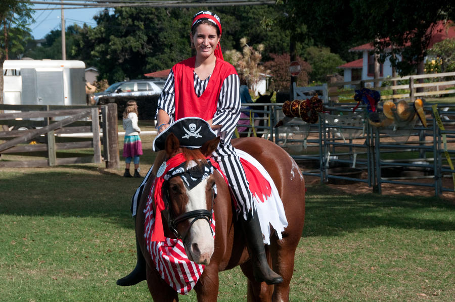 Pirate Horse costume by dressageart13
