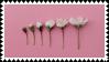 minimal flowers by omnivore-daydreams