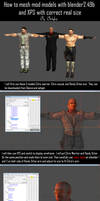 How to mesh mod models with correct realistic size