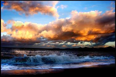 Palm Cove by jemapellenicoletta
