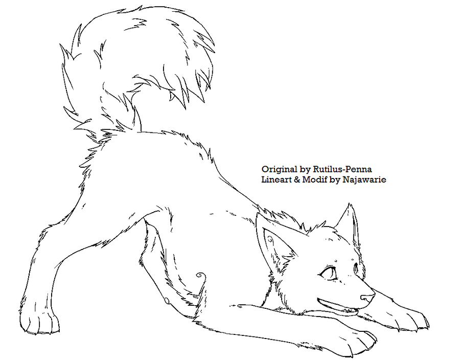 Line Drawing Wolf Face : Baby wolf lineart by najawarie on deviantart
