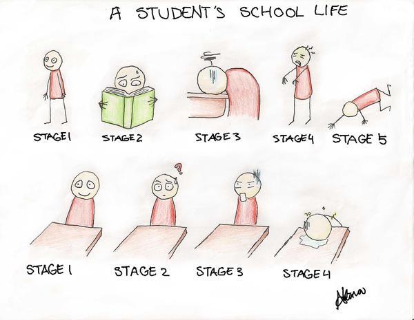 My student life essay