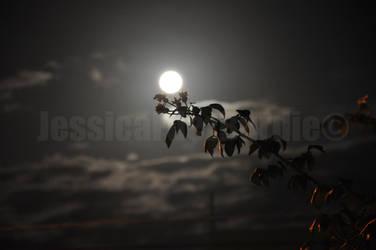 Sky Last night by Jessfburdie