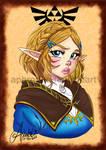 Princess Zelda BOTW2