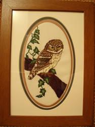 Long Stitch Little Owl