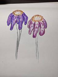 Droopy flower Sketch