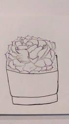 Purple Succulent Sketch