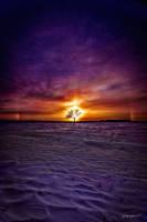 Vibrant Prairie by jay-peg