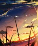 Reflection of a Summer Evening