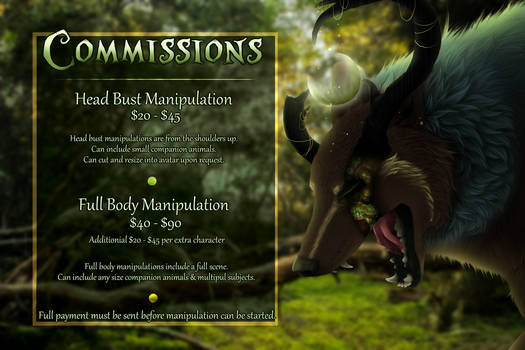 Commissions | OPEN