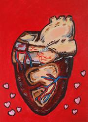 (Human) Heart by Prickblad by Prickblad