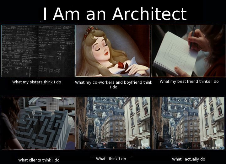 what does an architect do pdf
