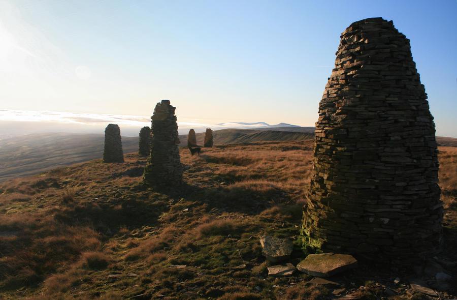 Stumps of Awareness by CumbriaCam