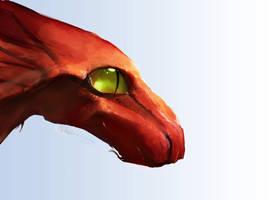 I like My Dragon