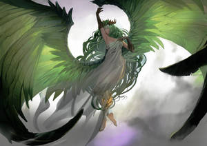 Wings Hauser