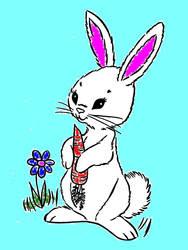 bunny girl - her name is Bunny