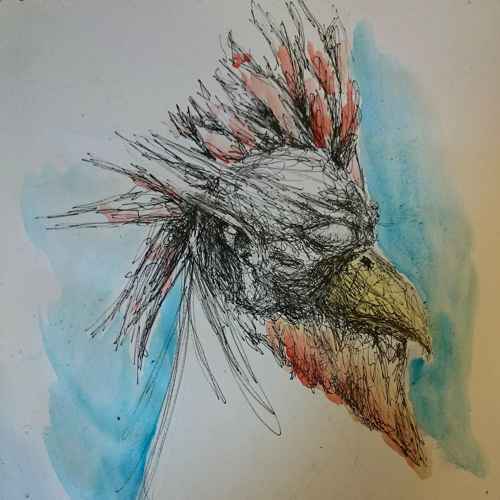 gallo pallo by MarloPrendelaMagia