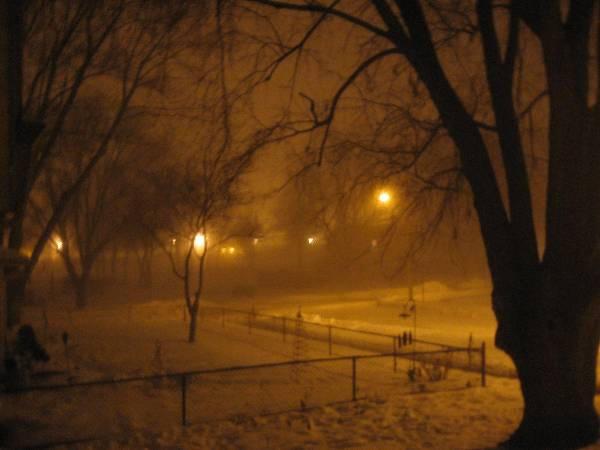 Cold Dark Night