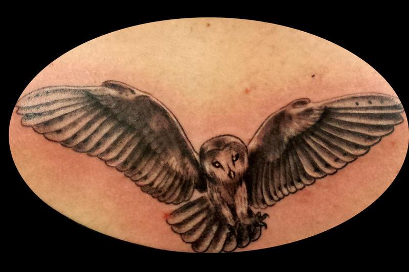Owl by bekrah