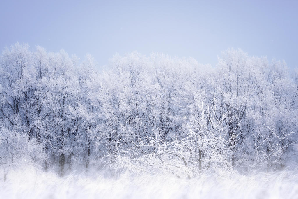 Winterfell by GalagoDeCodi