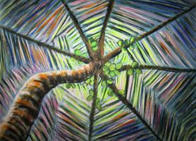 Tropical Umbrella by juliarita