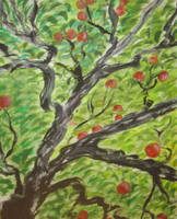 apples In My Eye (pt 1) by juliarita