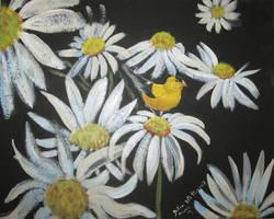 Finch On A Daisy by juliarita