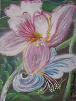 Flower Doves by juliarita
