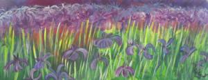 Royal Purple by juliarita