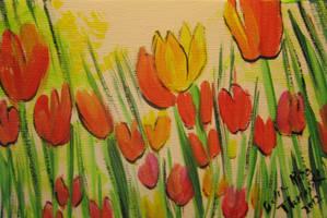Rainbow Tulips by juliarita