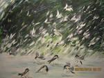 Chickadee Shower by juliarita