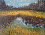Sherwood Pond