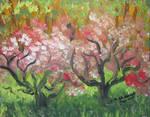 Wild Apple Trees