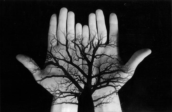 tree hands... by tine85